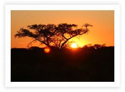 Sued Afrika